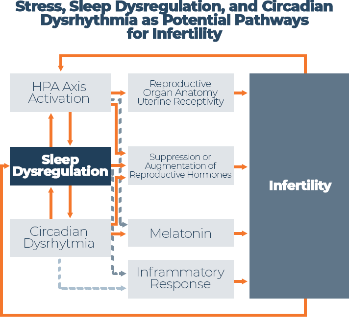 Graph Stress, Sleep Dysregulation and Circadian Dysrhythmia as Potential Pathways for Infertility