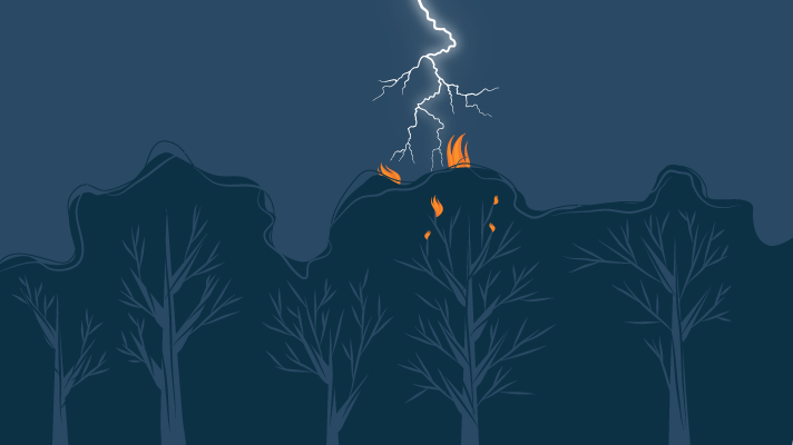 Lightning strike forest and starts fire