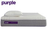 Purple Hybrid Premier small image