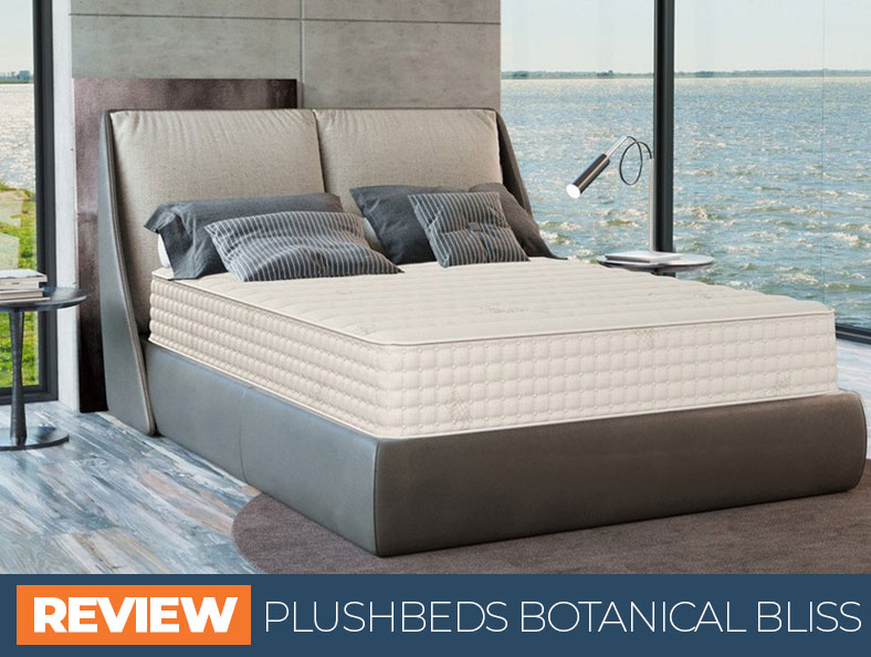 Review of the Plushbeds Botanical Bliss mattress updated