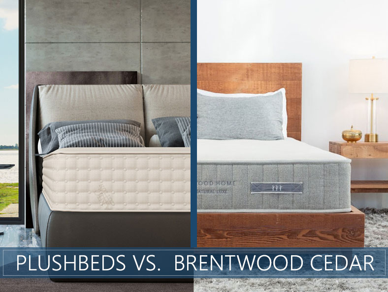 overview of Plushbeds vs Brentwood Cedar