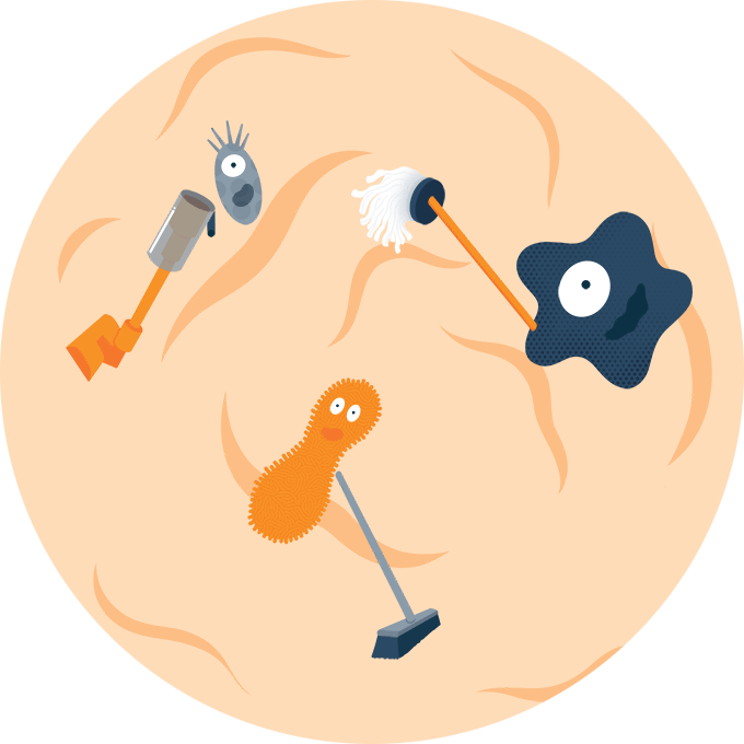 Illustration of Microbes Cleaning inside Gut