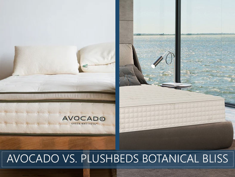 avocado vs plushbeds botanical bliss new comparison image