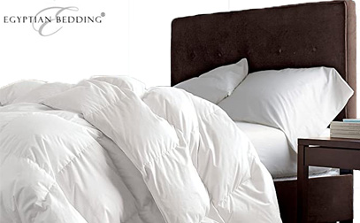 Product Image of Egyptian Bedding Down Comforter