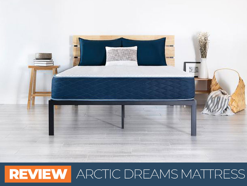 our arctic dreams overview