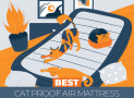 The 4 Best Puncture (Cat) Proof Air Beds – 2021 Reviews