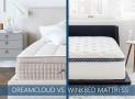Our WinkBed vs. DreamCloud Premier Bed Comparison for 2020