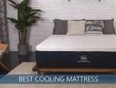 Our 5 Best Futon Mattresses Reviewed In 2018 The Most